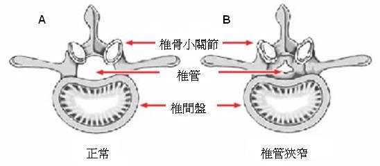 Fig 1_Eng.jpg
